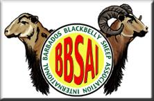 BBSAI Logo