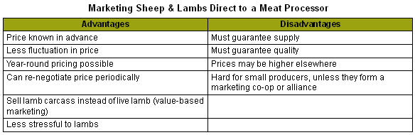 Producing and Selling Sheep to the Ethnic/Religious Meat Markets