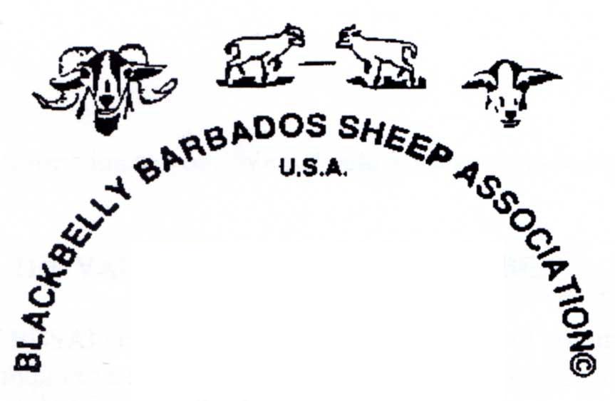 BBSAI-logo.1998
