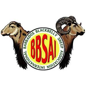 Barbados Blackbelly Sheep Association International (BBSAI)